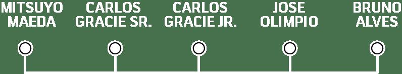 Bruno Alves Degree